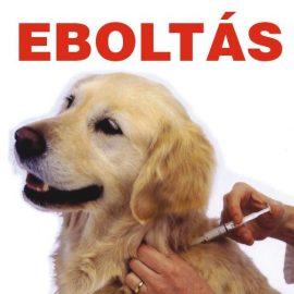 2016. szeptember 22-én eboltás