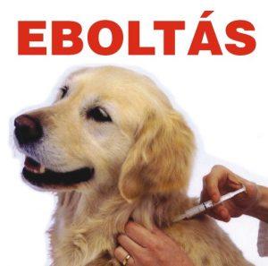 eboltas1
